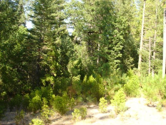 0 Sand Creek Drive, Berry Creek, CA 95916