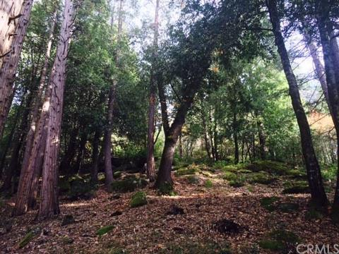 0 Forest Glade, Berry Creek, CA