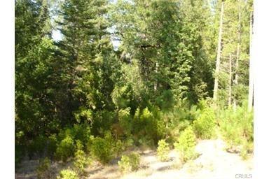 0 Sand Creek Dr, Berry Creek, CA 95916