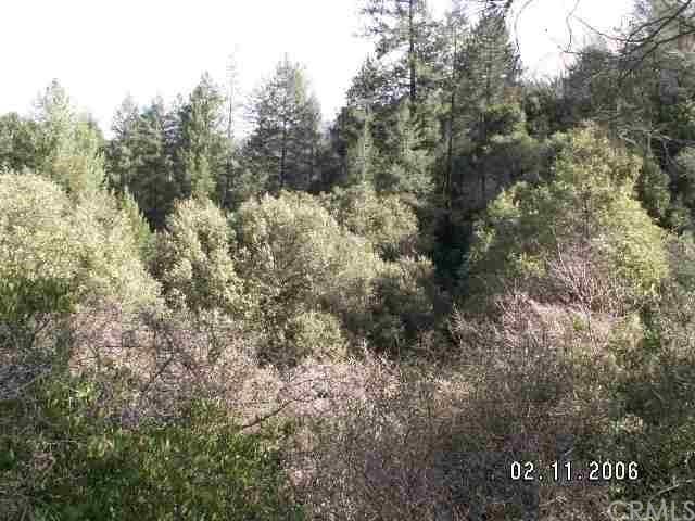 0 Bloomer Hl, Berry Creek, CA 95916