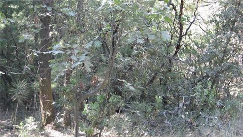 0 Pinetree, Berry Creek, CA 95916