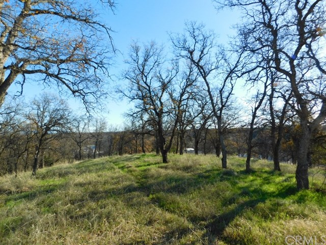 27 Pinto Lane, Red Bluff, CA 96080