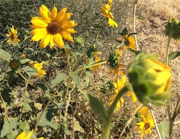 0 Diablo Road, Santa Margarita, CA 93453