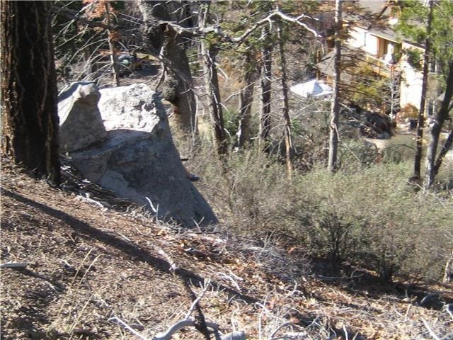 840 Blue Spruce Dr, Cedar Glen, CA 92321