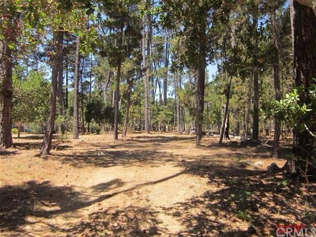 6450 Cambria Pines Rd, Cambria, CA 93428