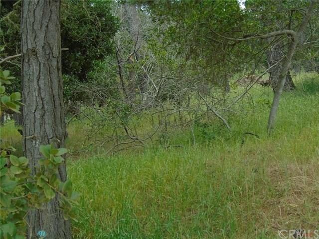 0 Norton Lane, Cambria, CA 93428