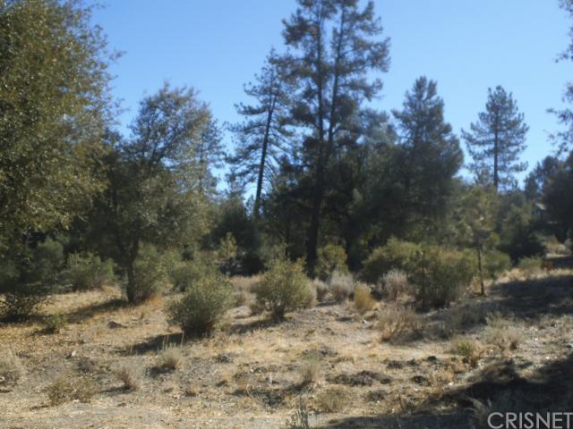 16220 Askin Drive, Pine Mountain Club, CA 93222