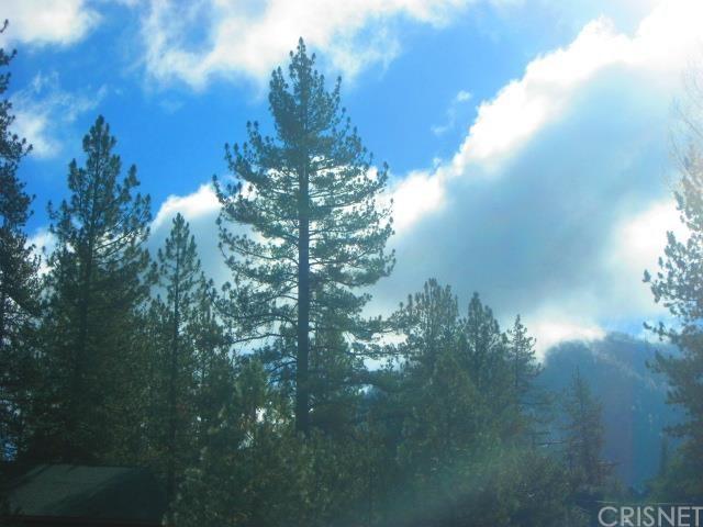 16004 Edgewood Dr, Pine Mountain Club, CA 93222