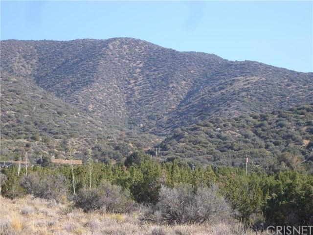 0 Vaccima Mesa Rdvic 99th #STE juniper, Juniper Hills, CA 93543
