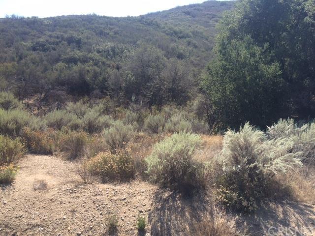 0 Vacbouquet Canyon Pav Vic Sp, Saugus, CA 91350