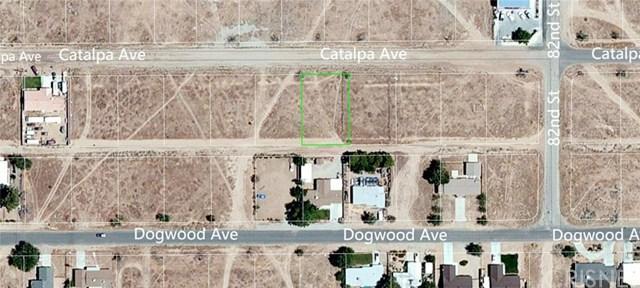 1 Catalpa Ave, California City, CA 93505