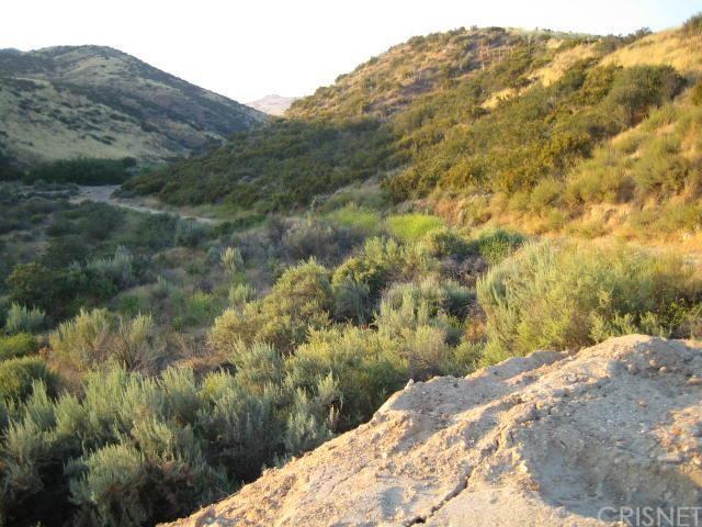 0 Soledad Canyon Rd, Agua Dulce, CA 93510