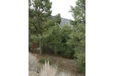 2236 Saint Bernard, Pine Mountain Club, CA 93222