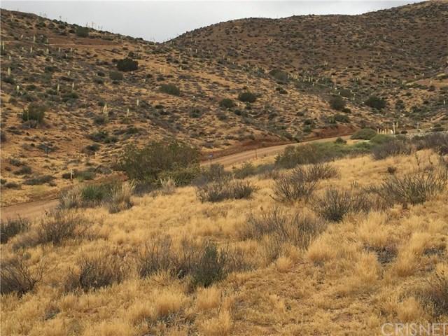 0 Vachypotenuse Rdvic Sierra, Acton, CA 93510