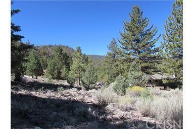1512 Linden Dr, Pine Mountain Club, CA 93222