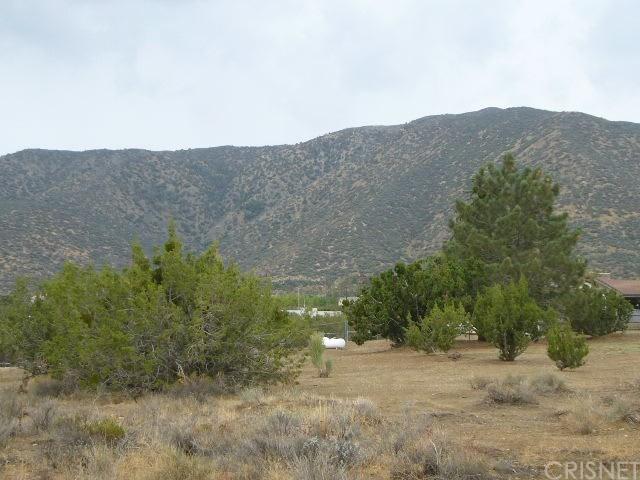 0 Vaccima Mesa Drt Vic 106 #STE juniper, Juniper Hills, CA 93543
