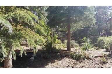 16620 Sandalwood Dr, Pine Mountain Club, CA 93222