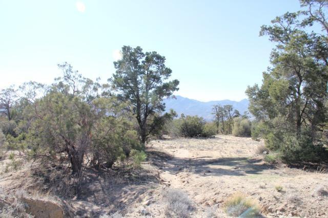 0 Pozo Dr, Mountain Center, CA