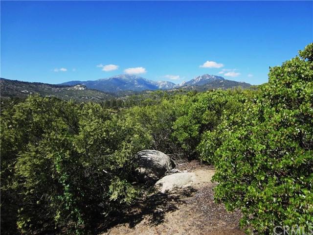 0 Mc Gaugh Road, Mountain Center, CA 92561