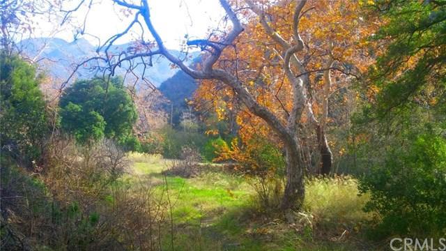 30841 Silverado Canyon Rd, Silverado Canyon, CA 92676