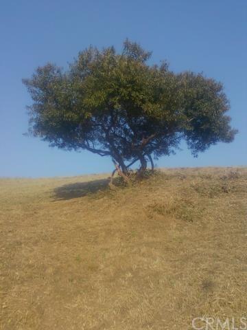 0 Area Of Clifton Thomas, Montecito Heights, CA