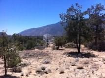 0 Materhorn Chillon Hts, Mountain Center, CA