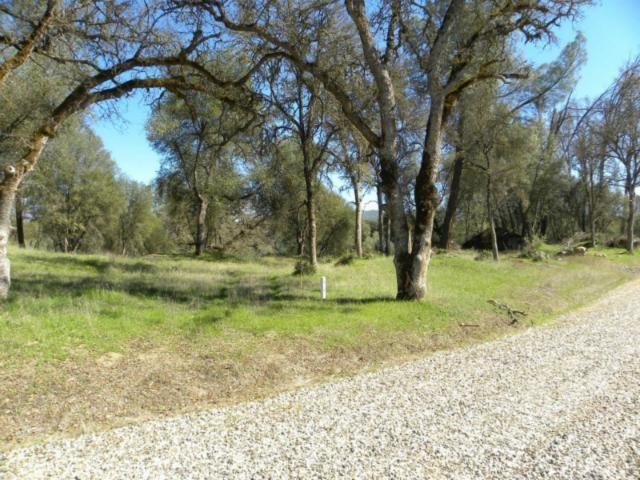 0 Buckeye Rd, Mariposa, CA 95338