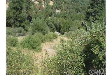 0 River View Dr, Oakhurst, CA 93644