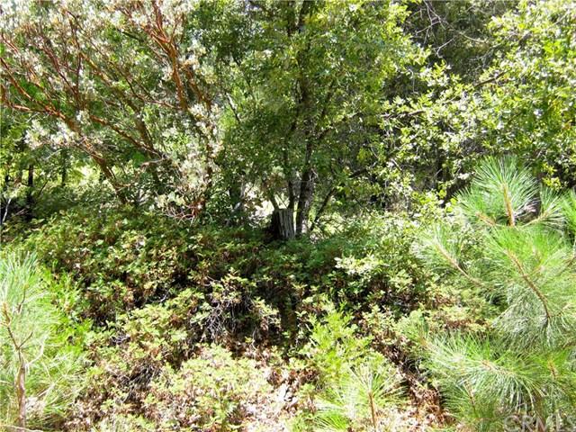 8 N Cedar Vista Circle, Bass Lake, CA 93604