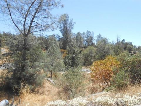 0 Deep Forest Dr, Coarsegold, CA 93614