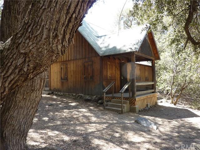 23 Seven Oaks, Angelus Oaks, CA 92305