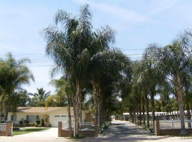 13200 E End Avenue, Chino, CA 91710