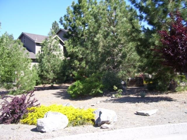5230 E Chaumont Drive, Wrightwood, CA 92397
