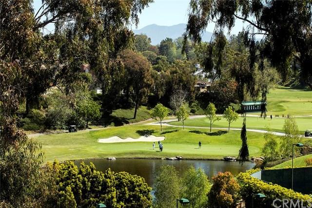 24 Canyon Fairway Dr, Newport Beach, CA 92660