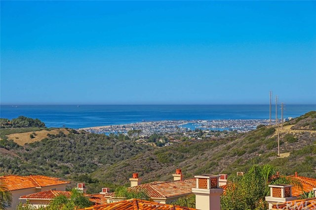 3 Beach Pine Dr, Newport Coast, CA 92657