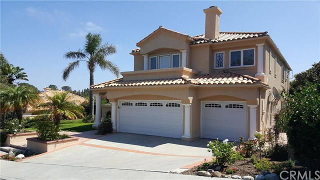 15 Tirremia Drive, Dana Point, CA 92629