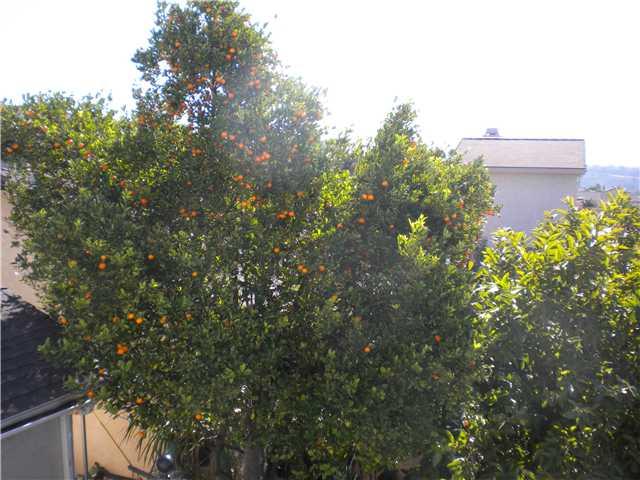 1518 Blanford St San Diego, CA 92114