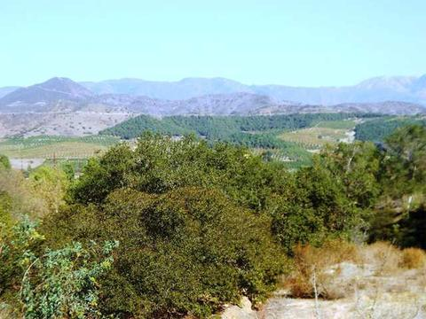 4040 Pala Mesa Drive Dr #4040, Fallbrook, CA 92028