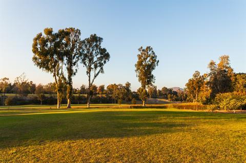 6380 Paseo Delicias, Rancho Santa Fe, CA 92067