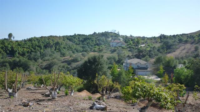 West Of 2815 Vi Via Del Robles Street #107-400-26-00, Fallbrook, CA 92028