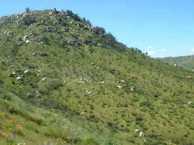 Crows Nest Lane #10, El Cajon, CA 92019
