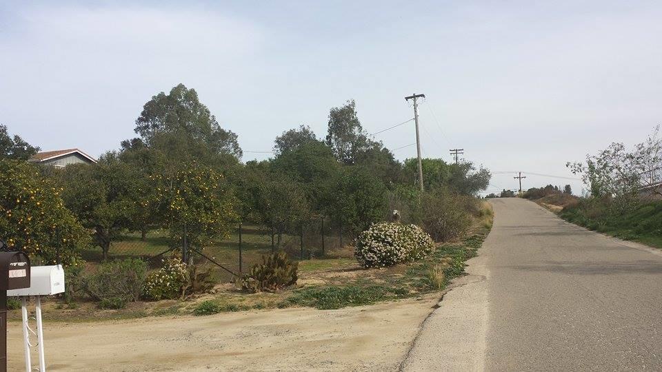 Lilac Vista Drive #22, Valley Center, CA 92082