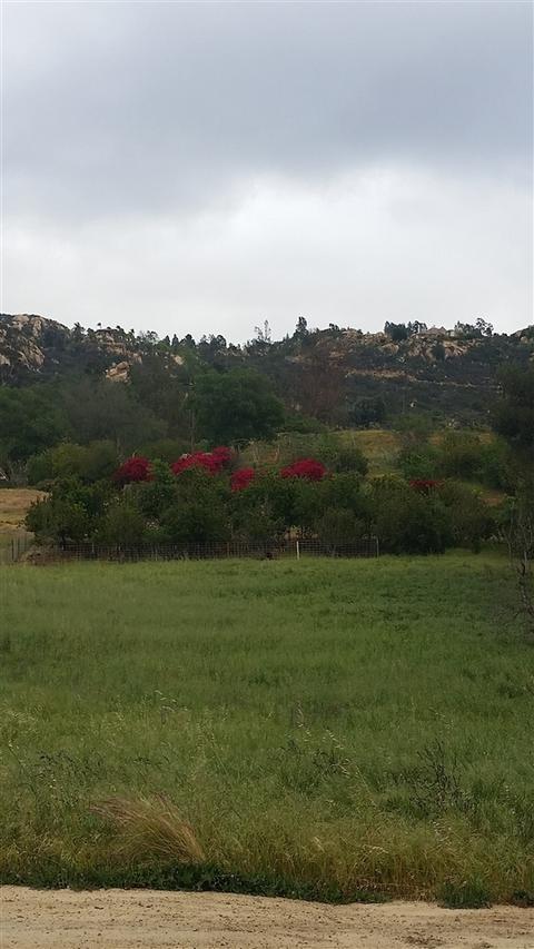 0 Rice Canyon Rd #9, Fallbrook, CA 92028