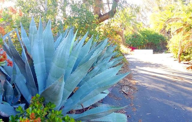 4560 Palomar #29, Fallbrook, CA 92028