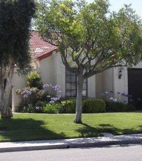 15397 Avenida Rorras, San Diego, CA 92128