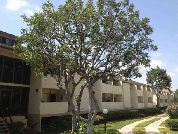 278 N Wilshire Ave #A25, Anaheim, CA 92801