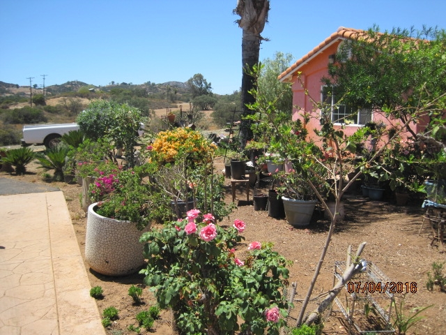 15776 Lyons Valley Road, Jamul, CA 91935