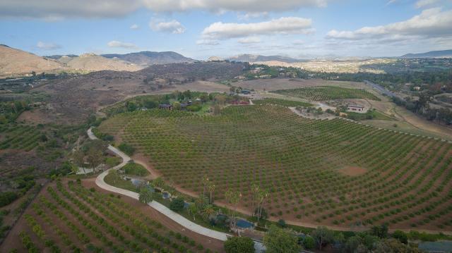 7010 El Camino Del Norte, Rancho Santa Fe, CA 92067