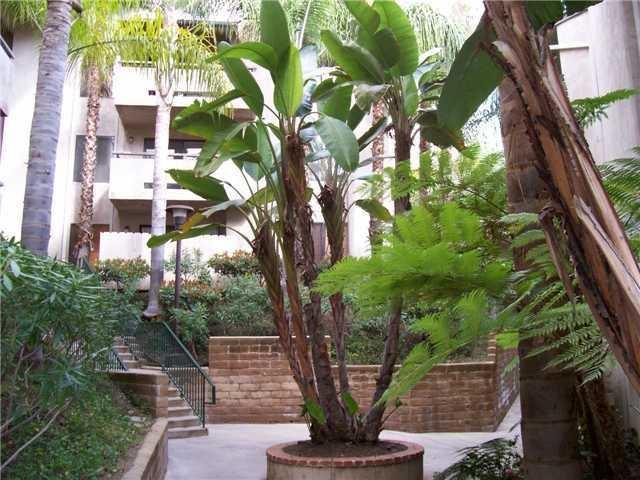 5885 El Cajon Blvd #304, San Diego, CA 92115