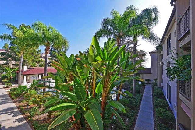 6924 Hyde Park Dr #219, San Diego, CA 92119